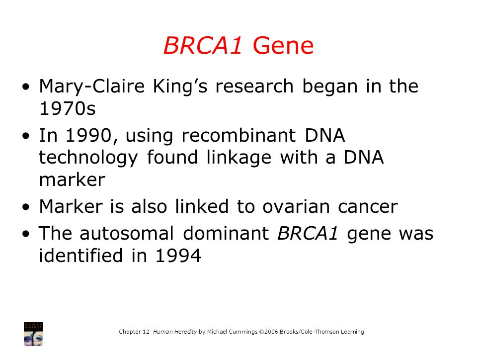 BRCA1 Gene Mary-Claire King's research began in the 1970s