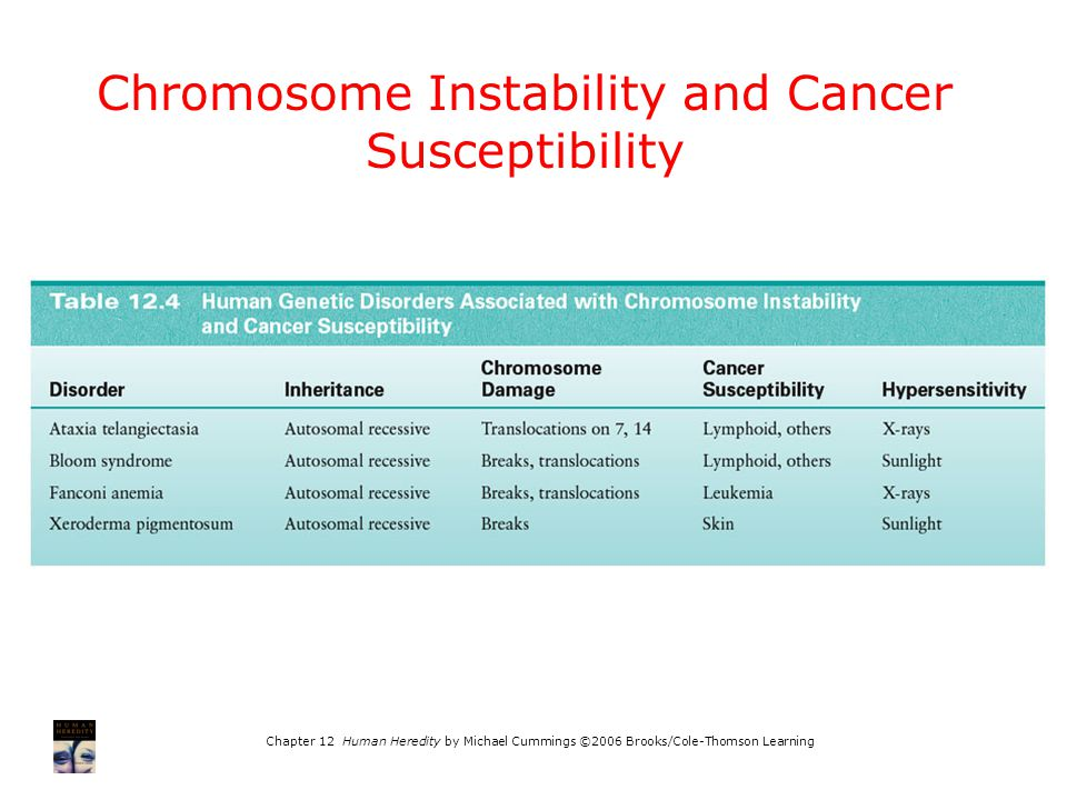 Chromosome Instability and Cancer Susceptibility