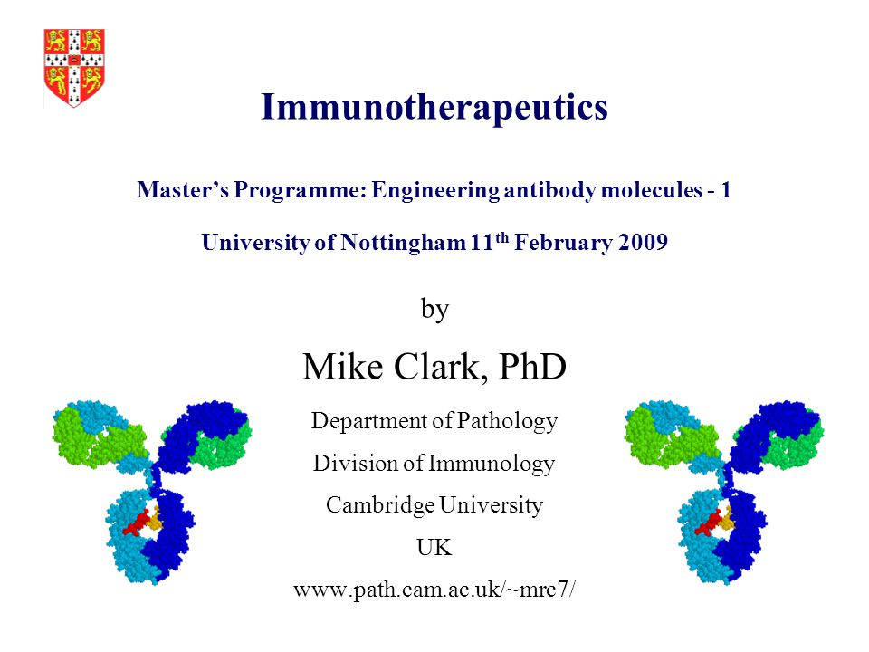 Immunotherapeutics Master's Programme: Engineering antibody molecules - 1 University of Nottingham 11th February 2009