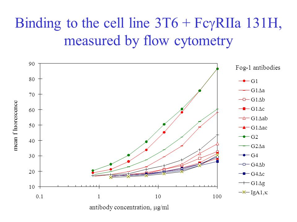 Binding to the cell line 3T6 + FcgRIIa 131H, measured by flow cytometry