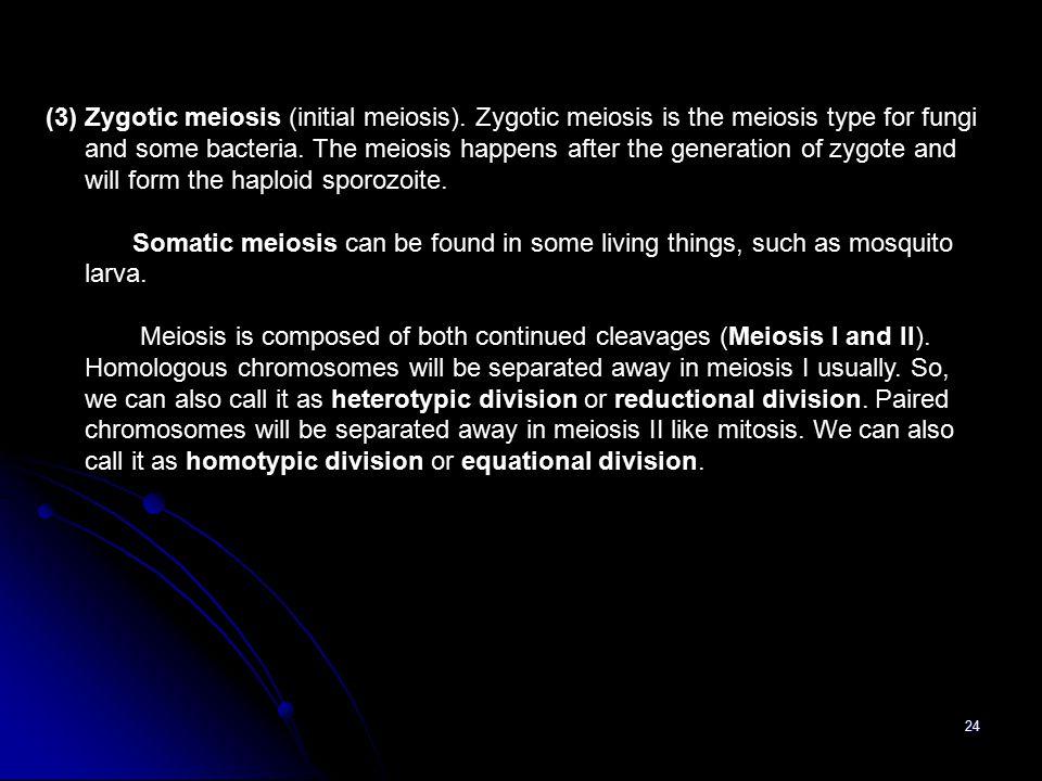 (3) Zygotic meiosis (initial meiosis)