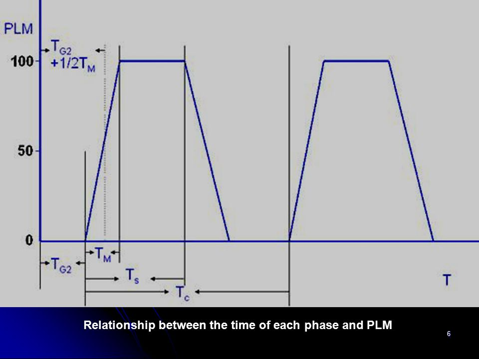 Relationship between the time of each phase and PLM
