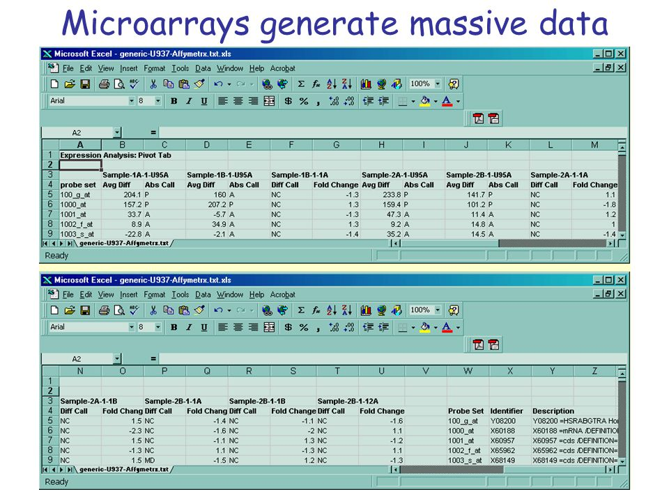 Microarrays generate massive data