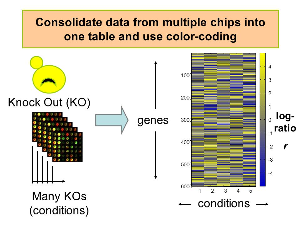 Consolidate data from multiple chips into one table and use color-coding