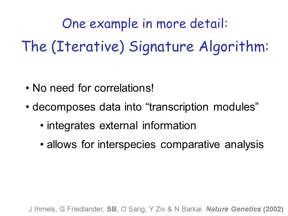 The (Iterative) Signature Algorithm: