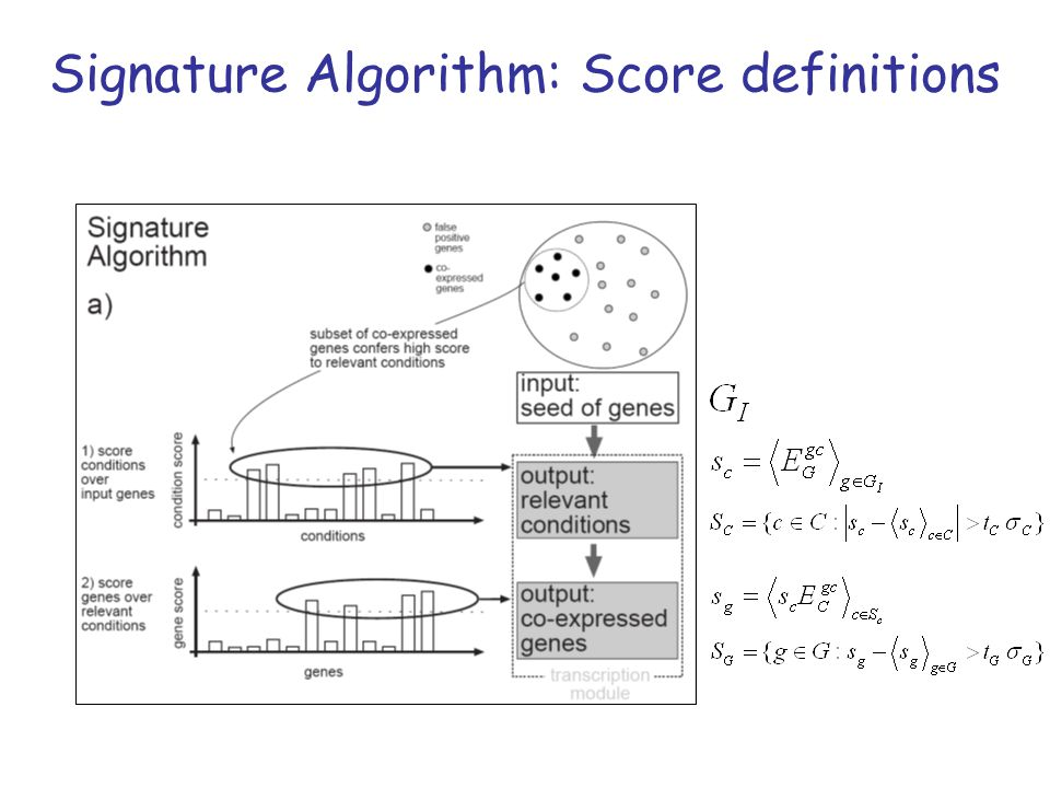Signature Algorithm: Score definitions