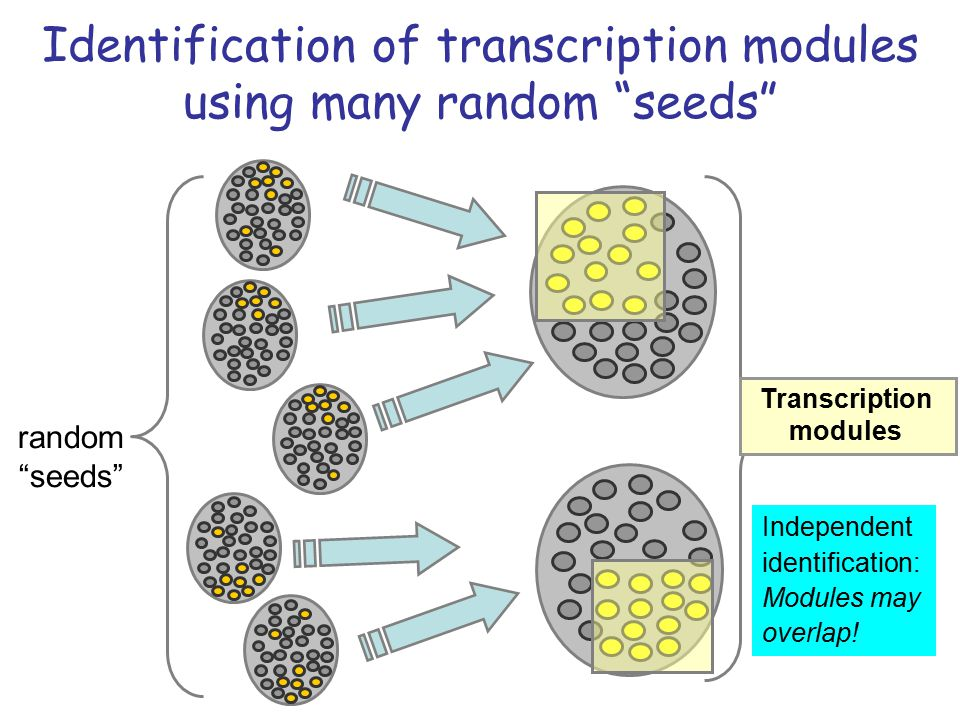 Transcription modules