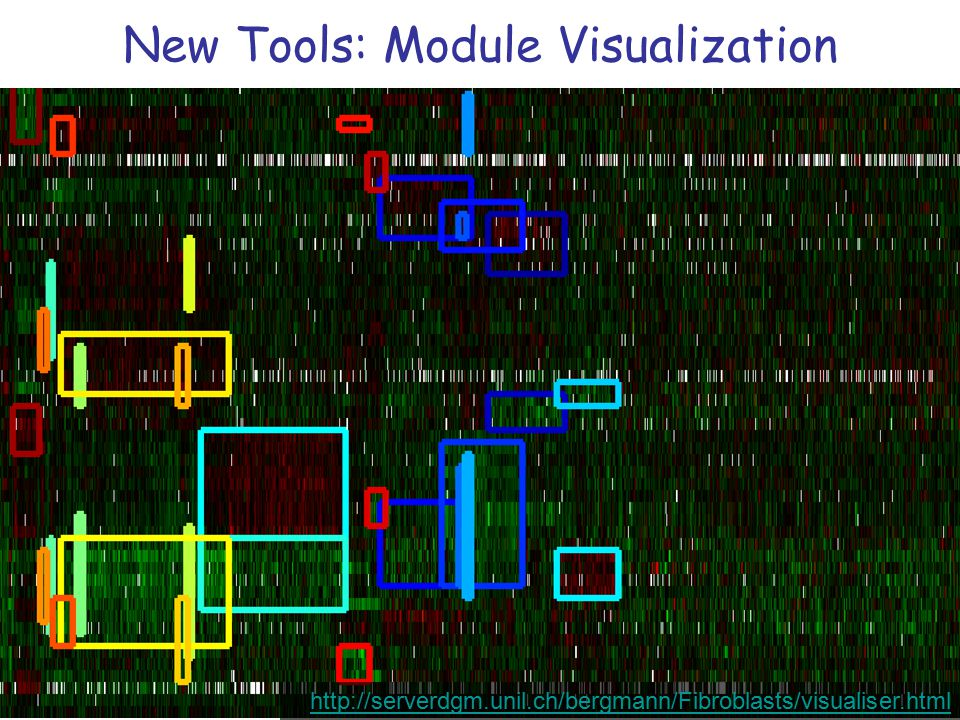New Tools: Module Visualization