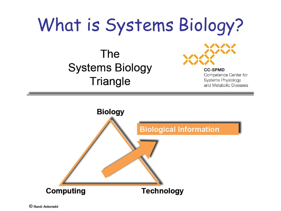 What is Systems Biology