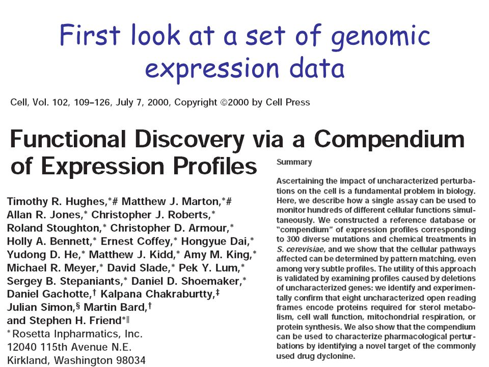 First look at a set of genomic expression data