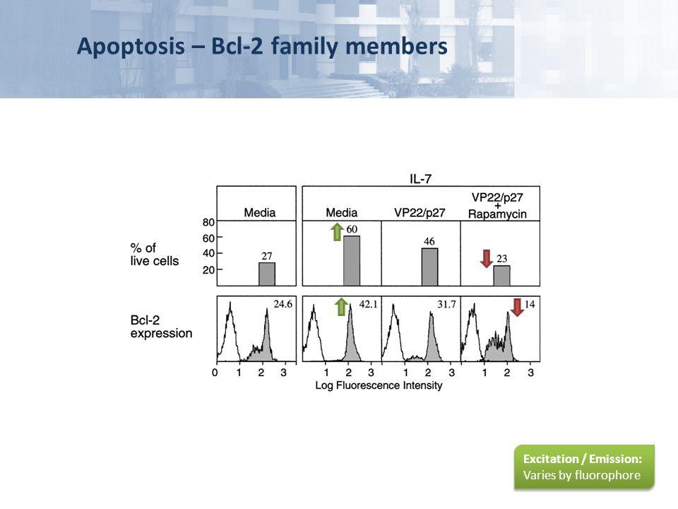 Apoptosis – Bcl-2 family members
