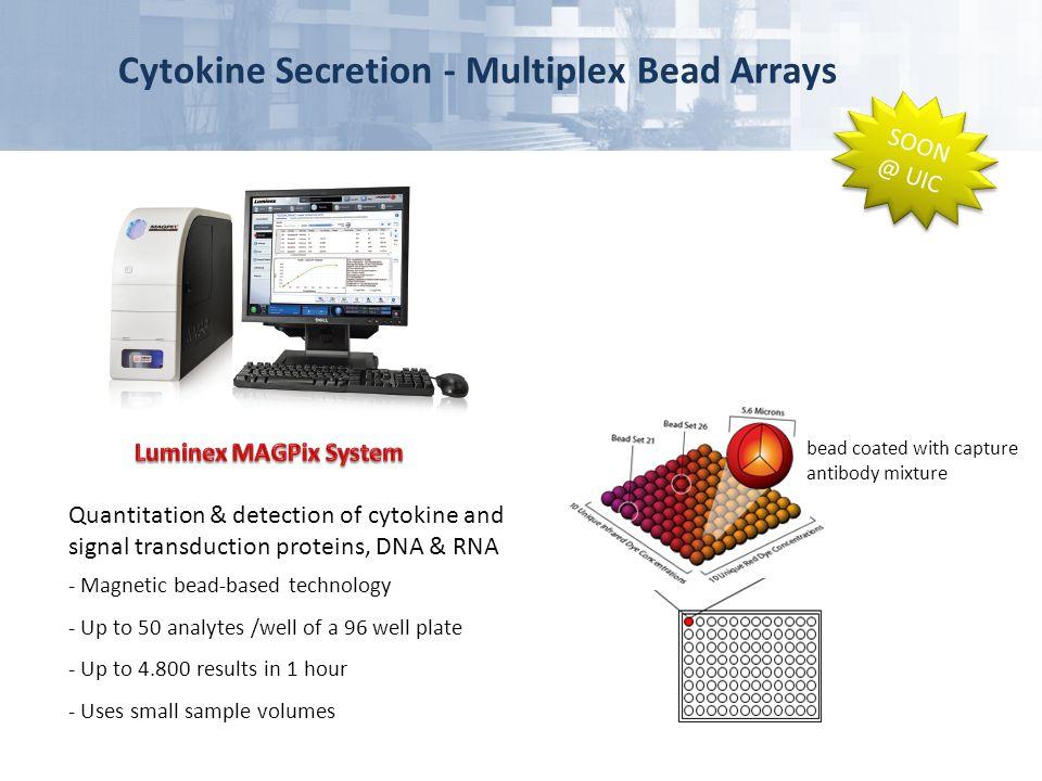 Cytokine Secretion - Multiplex Bead Arrays