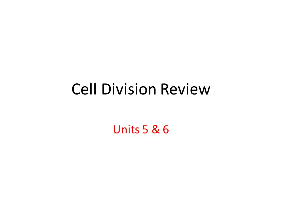 Cell Division Review Units 5 & 6