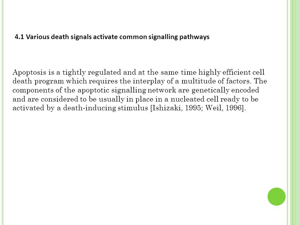 4.1 Various death signals activate common signalling pathways