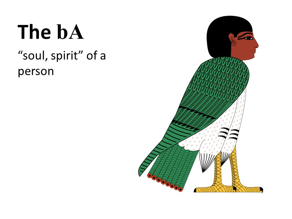 The bA soul, spirit of a person