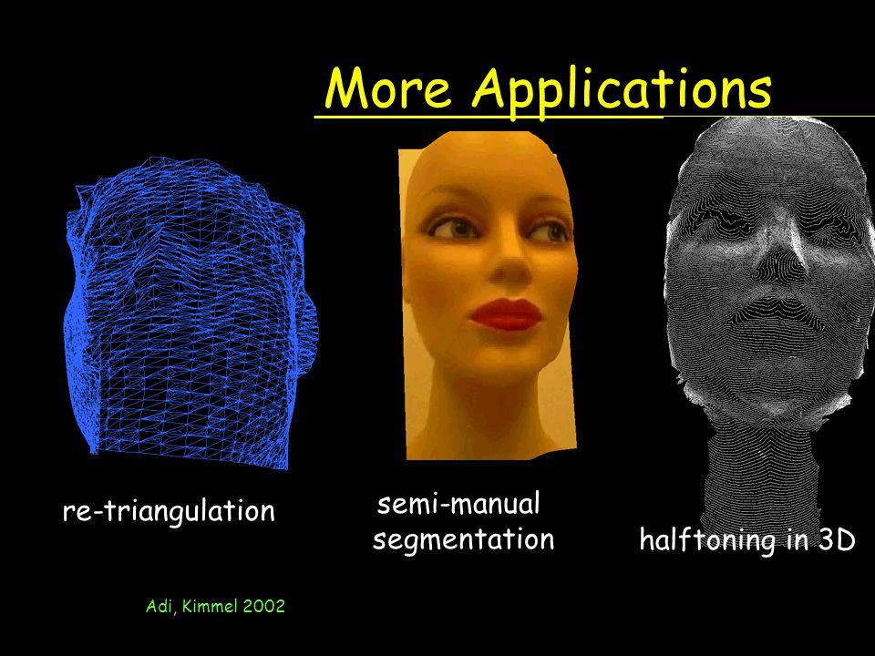 More Applications semi-manual re-triangulation segmentation