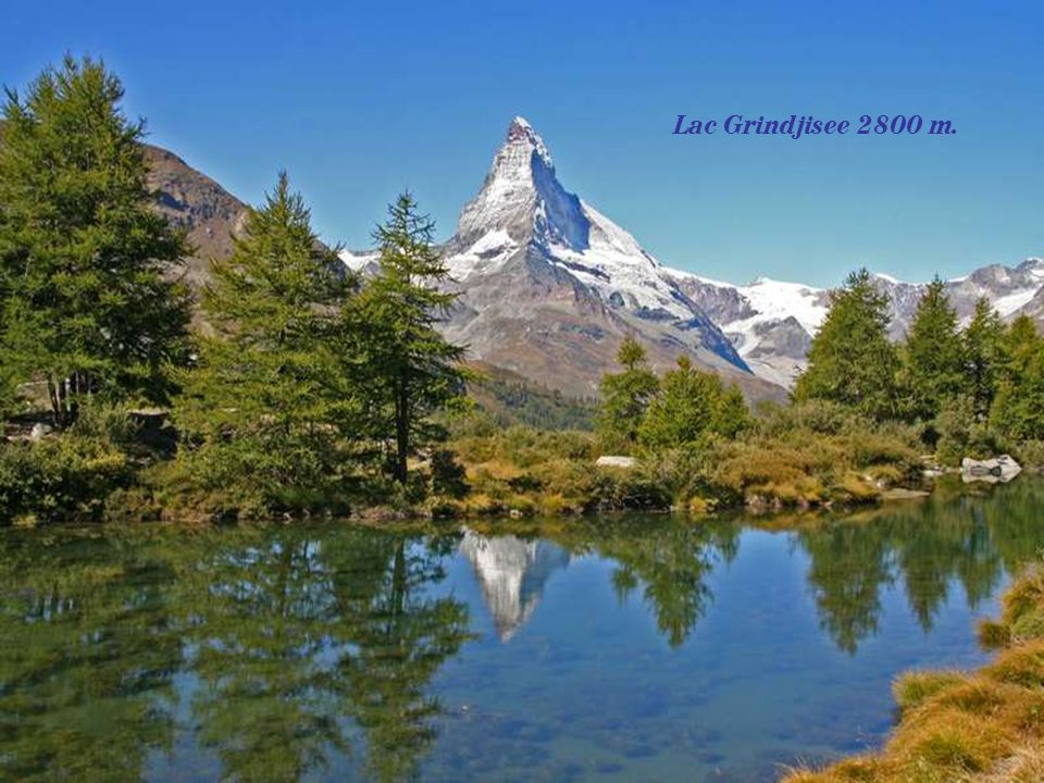 Lac Grindjisee 2800 m.