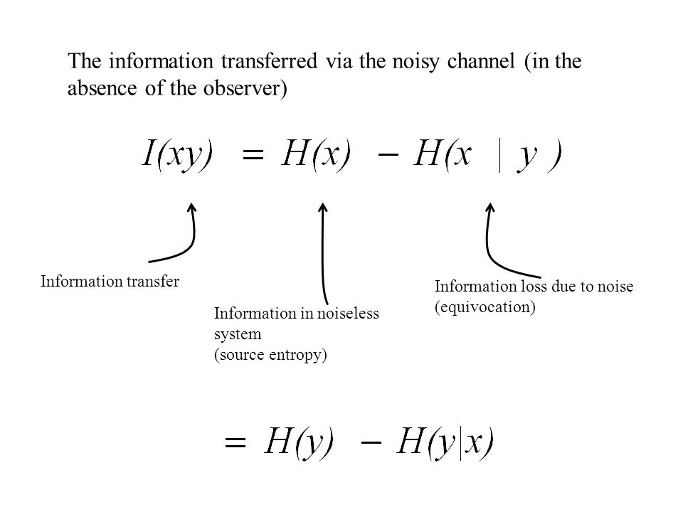 The information transferred via the noisy channel (in the absence of the observer)