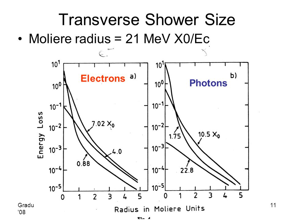 Transverse Shower Size