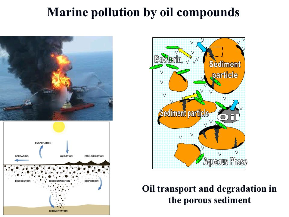 Aqueous Phase Marine pollution by oil compounds