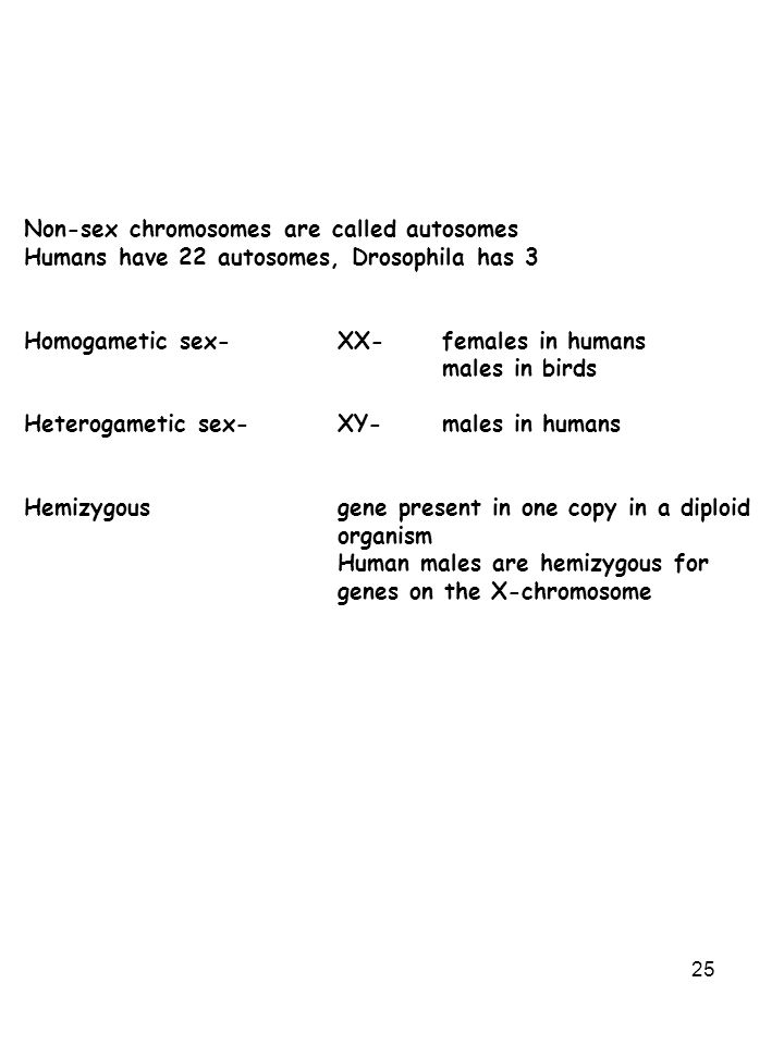 Non-sex chromosomes are called autosomes