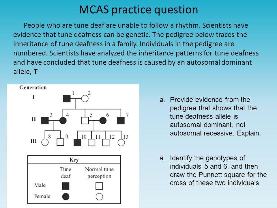 MCAS practice question
