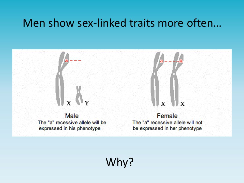 Men show sex-linked traits more often…