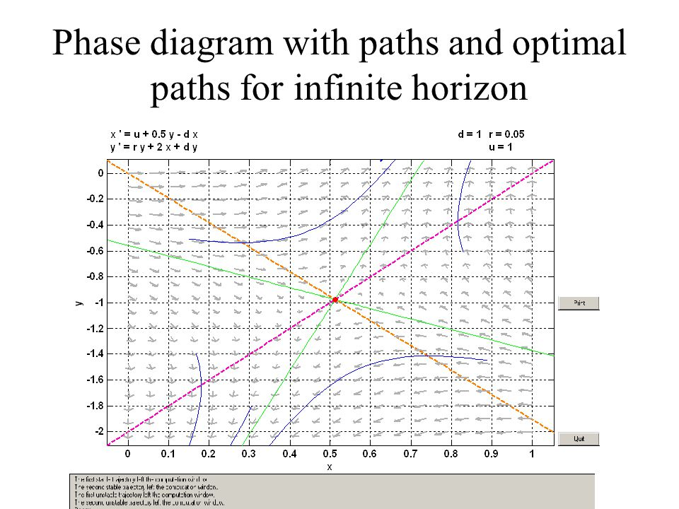 Phase diagram with paths and optimal paths for infinite horizon
