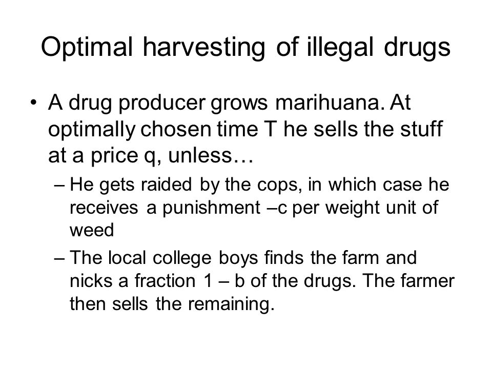 Optimal harvesting of illegal drugs