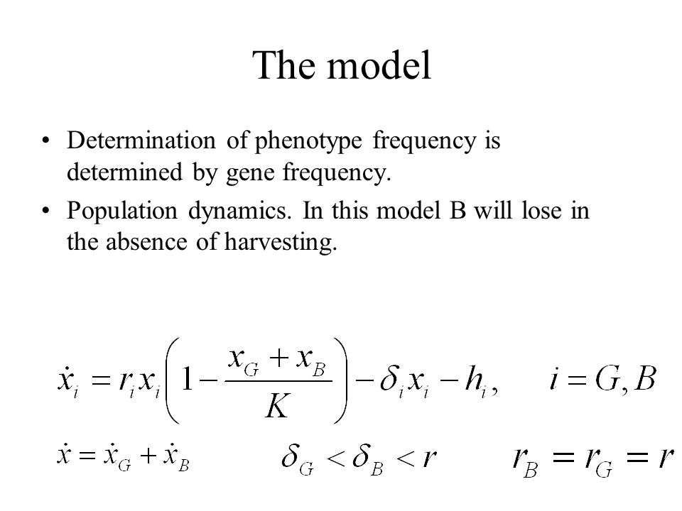 The model Determination of phenotype frequency is determined by gene frequency.