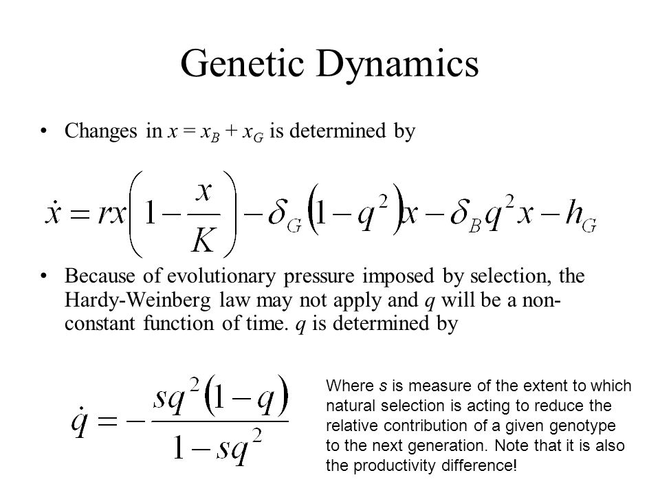 Genetic Dynamics Changes in x = xB + xG is determined by
