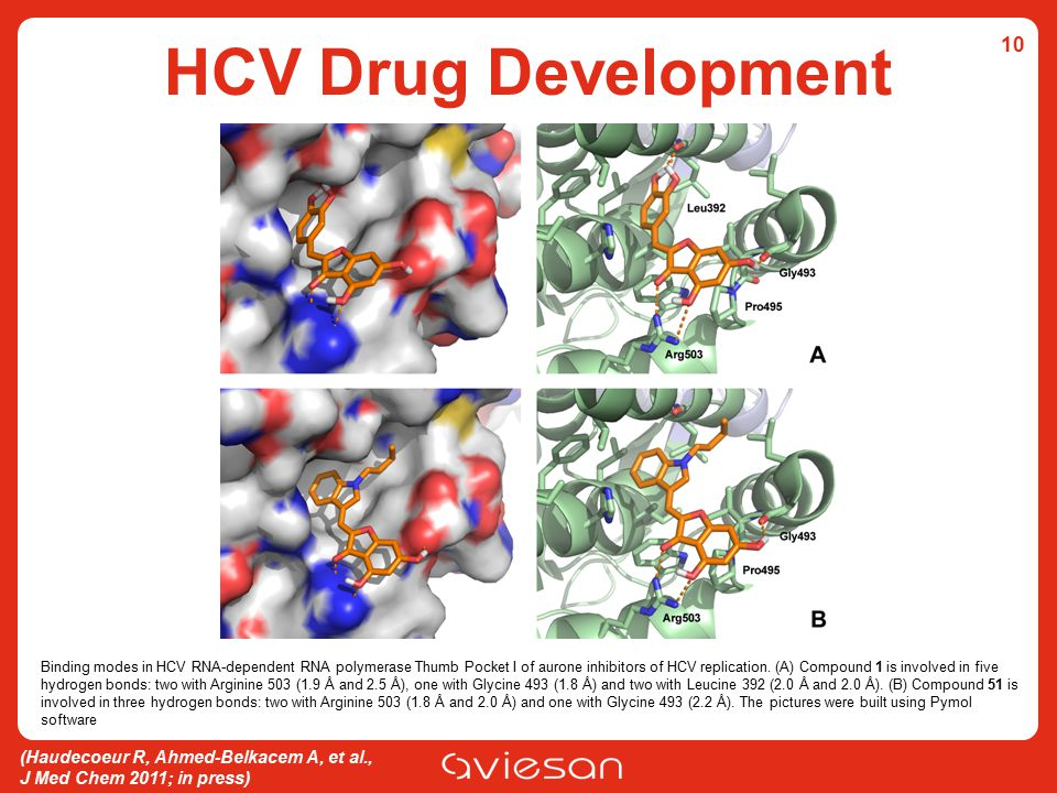 HCV Drug Development 10.