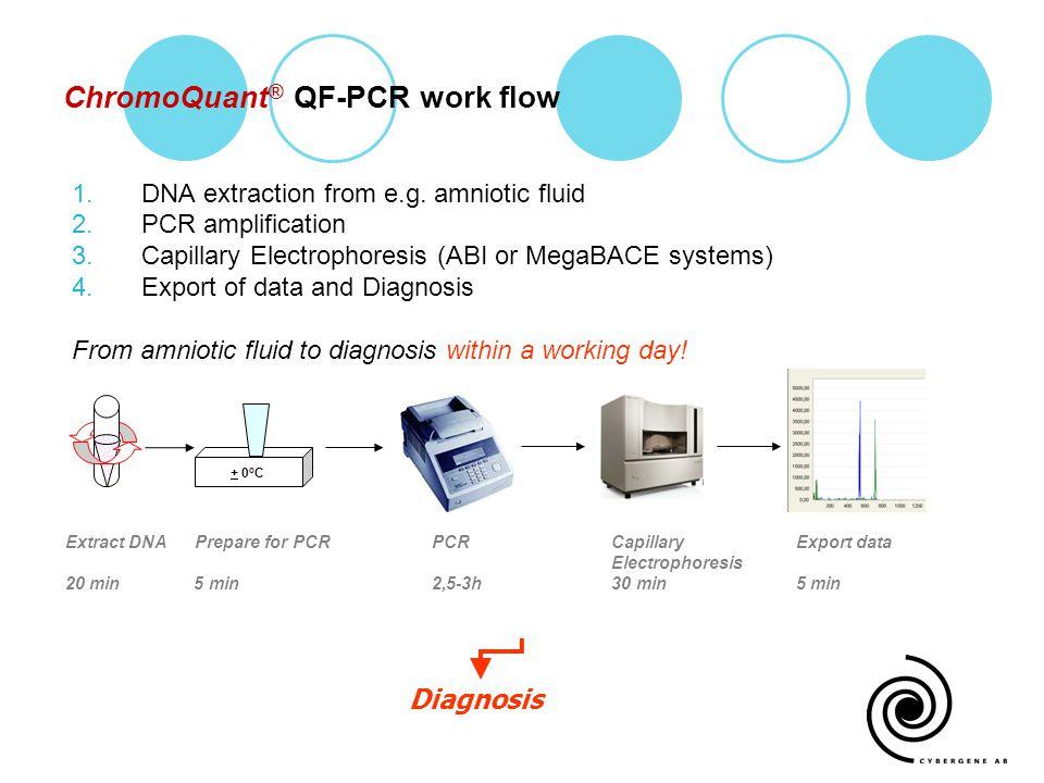 ChromoQuant® QF-PCR work flow