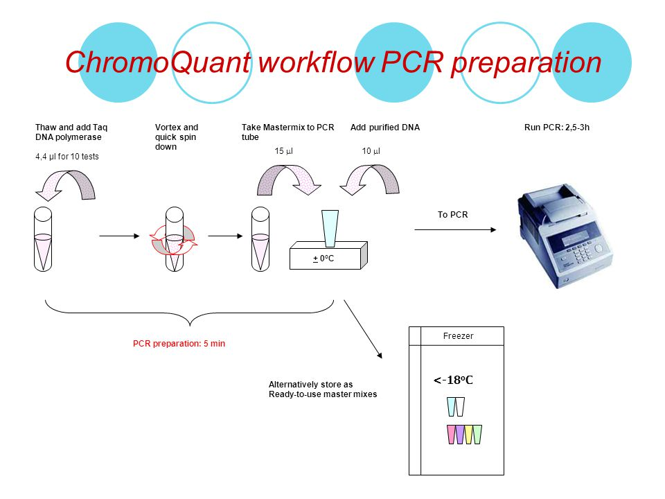 ChromoQuant workflow PCR preparation