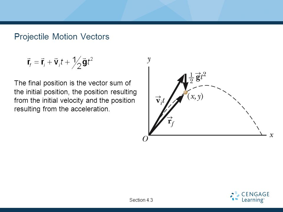 Projectile Motion Vectors