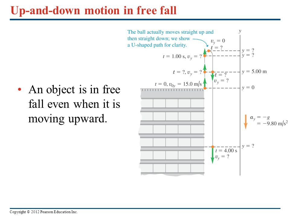 Up-and-down motion in free fall