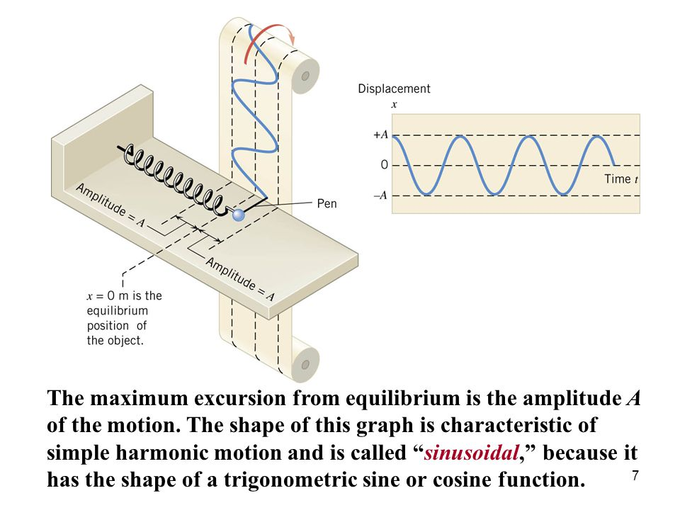 The maximum excursion from equilibrium is the amplitude A of the motion.