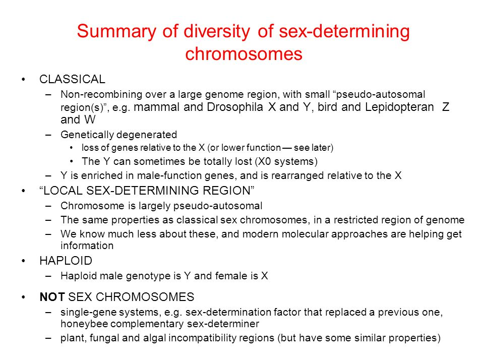 Summary of diversity of sex-determining chromosomes