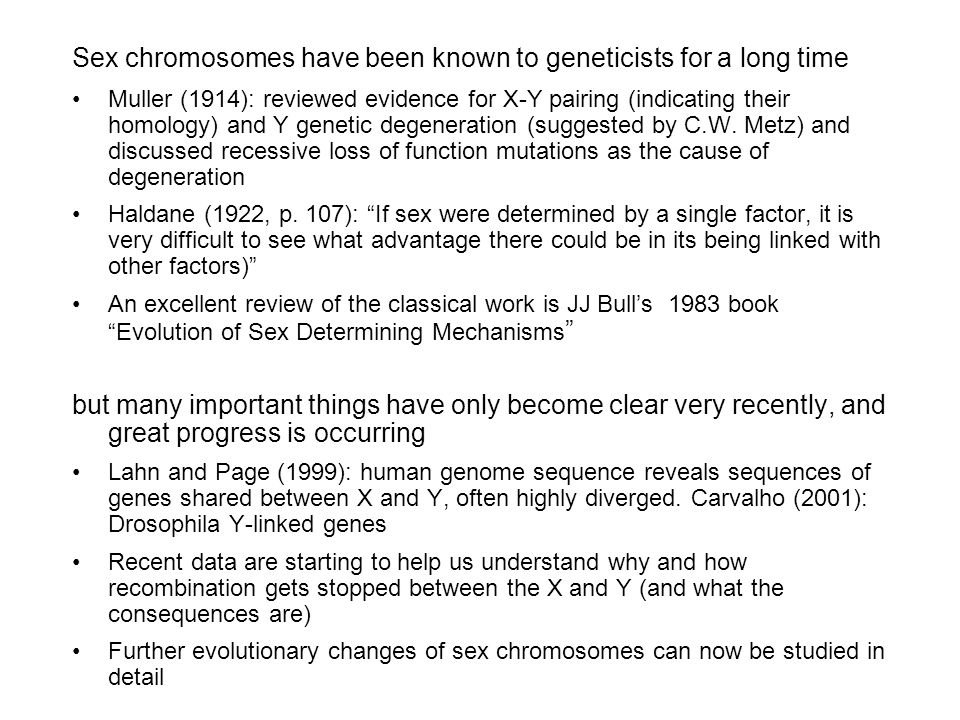 Sex chromosomes have been known to geneticists for a long time