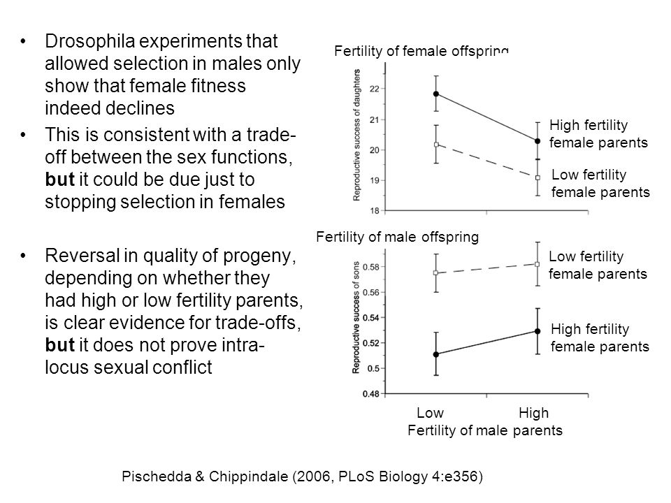Fertility of male parents