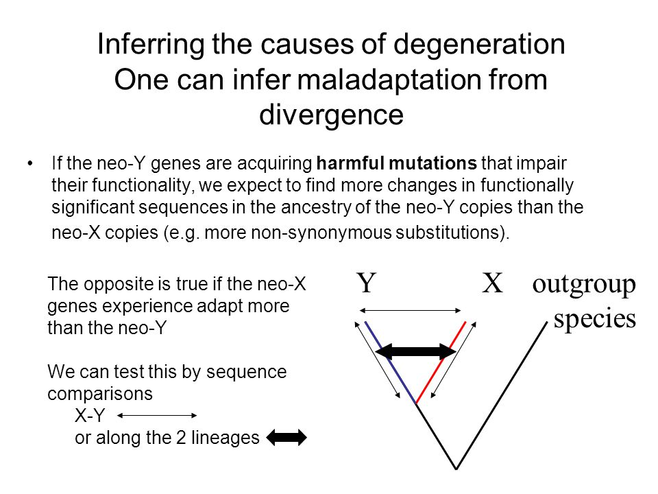 Inferring the causes of degeneration One can infer maladaptation from divergence