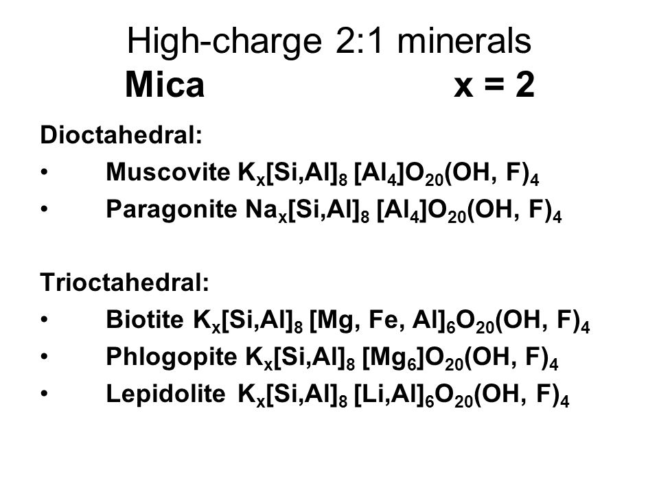 High-charge 2:1 minerals Mica x = 2