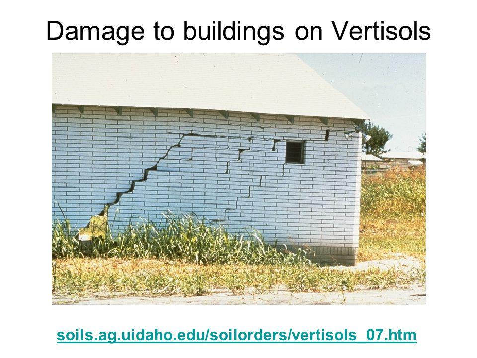 Damage to buildings on Vertisols