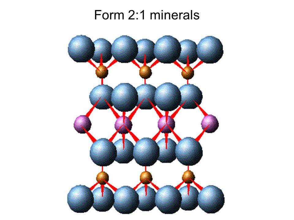 Form 2:1 minerals