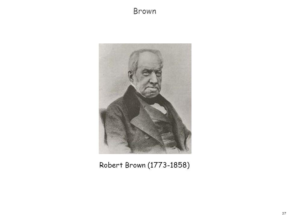 Brown Robert Brown (1773-1858)
