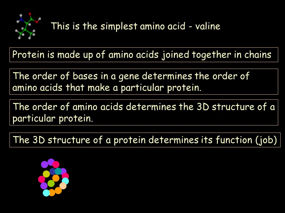 This is the simplest amino acid - valine