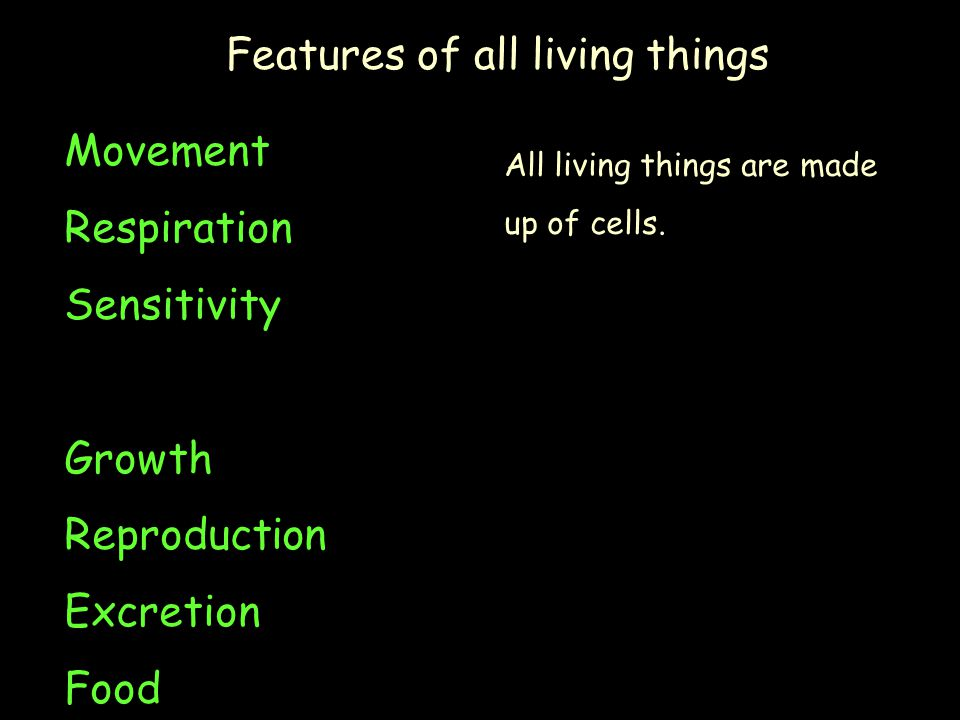 Features of all living things