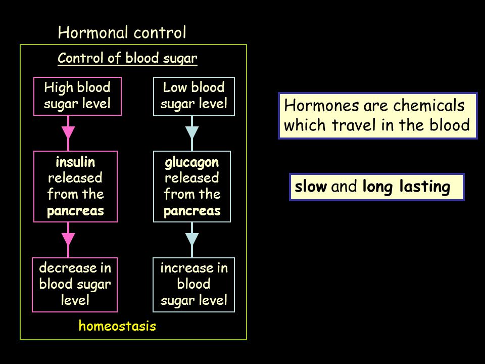 Hormones are chemicals which travel in the blood