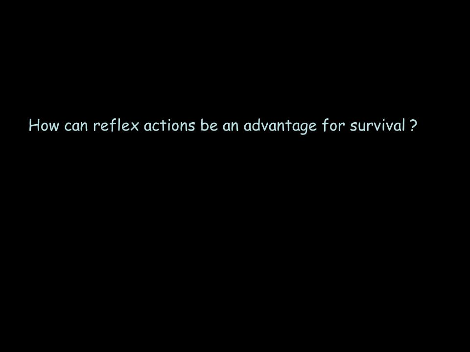 How can reflex actions be an advantage for survival