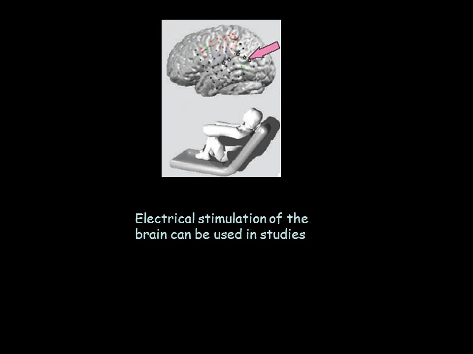 Electrical stimulation of the brain can be used in studies